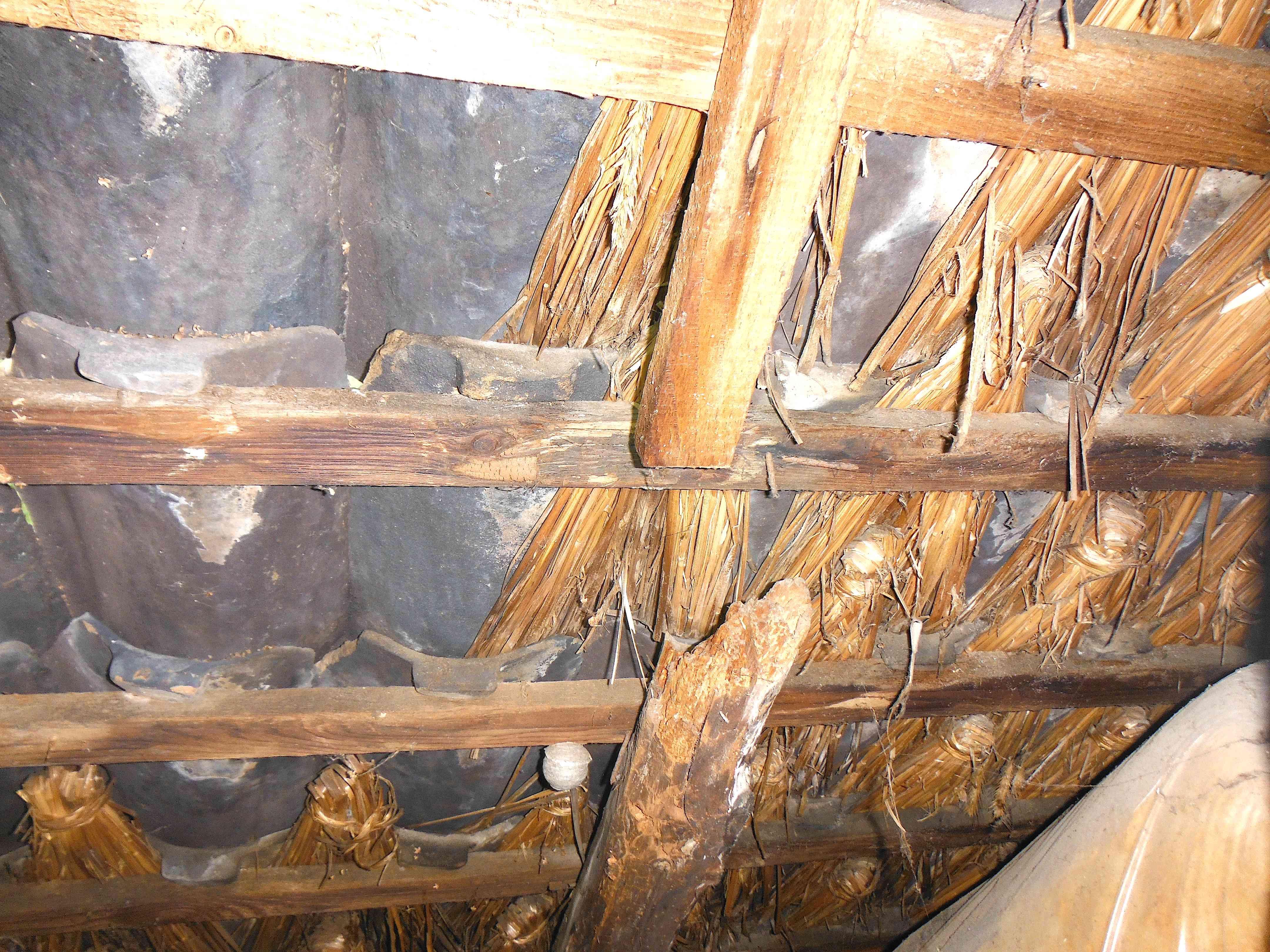 Dachstuhl DG | vermorschter, gebrochener Sparren